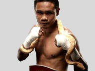 WBO Order Donnie Nietes Vs Aston Palicte Rematch Purse Bid