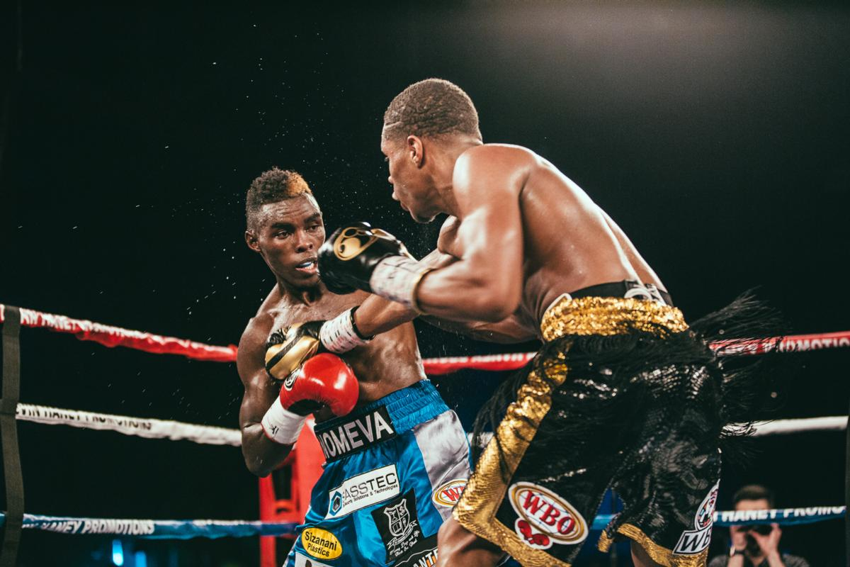 Haney Impressive With UD Win Over Ndongeni
