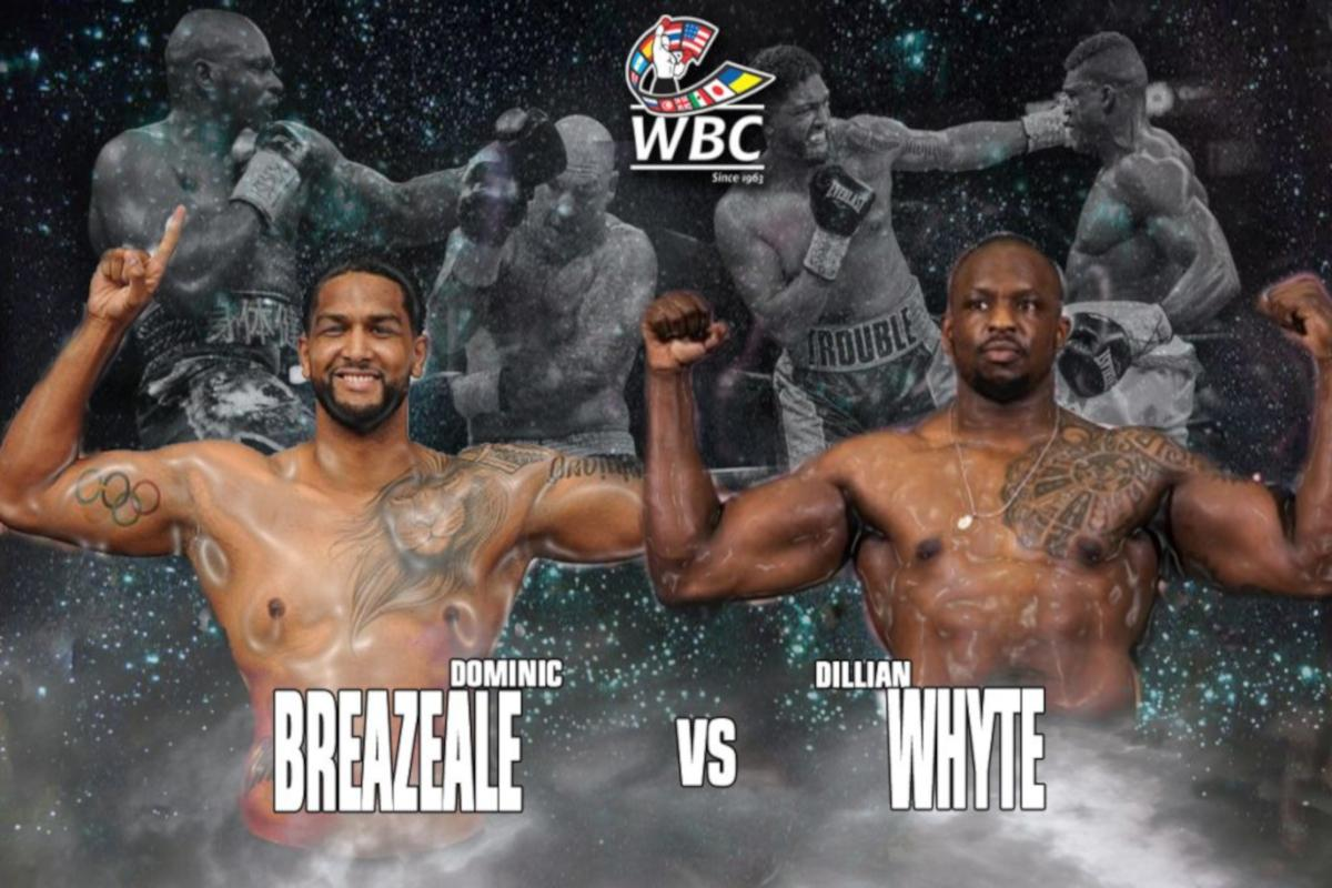 WBC Order Heavyweight Interim Title Bout